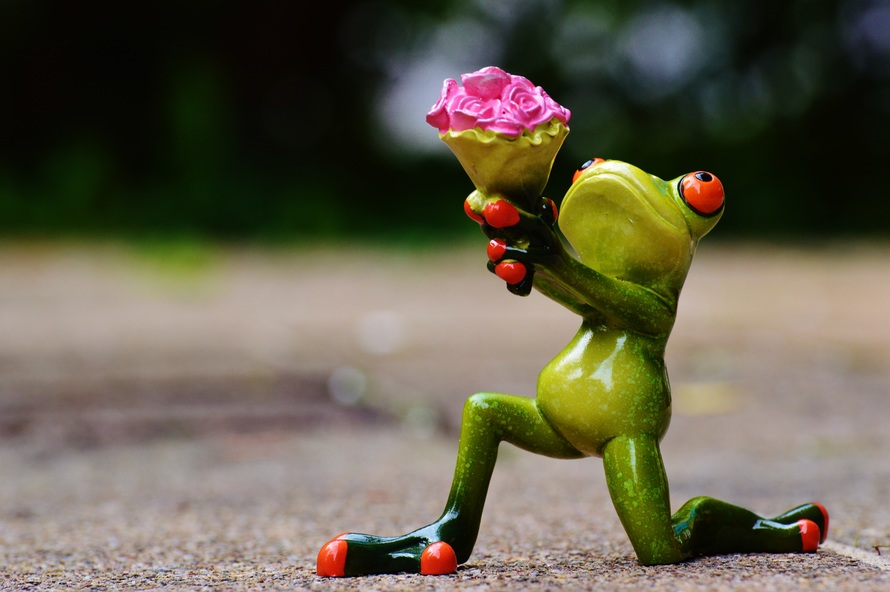 Frog holding up flowers